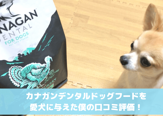 カナガンデンタルドッグフード 口コミ評判