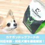 カナガン 対応年齢・対応犬種