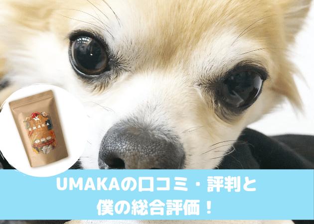 UMAKA 口コミ評判