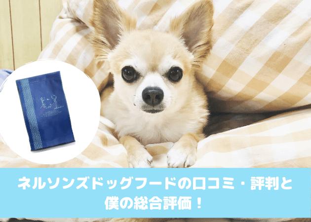 ネルソンズ ドッグフード 口コミ評判