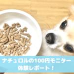 ナチュロル100円モニター・サンプル