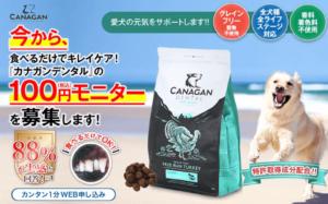 カナガンデンタル100円モニター